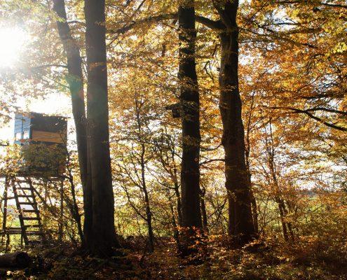 Einladung zur Herbstwanderung im Altmühltal 2016